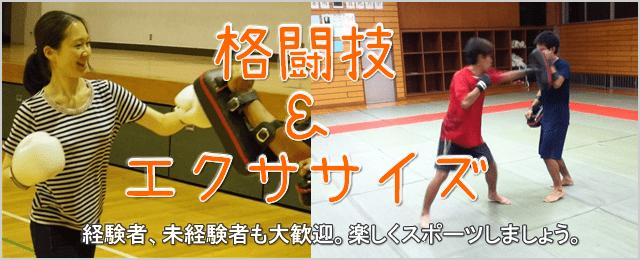 格闘技バナー